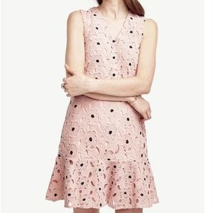 Ann Taylor Lace Begonia Pink Flounce Hem Dress